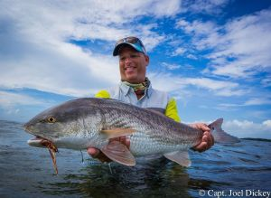 Bruce Chard High Res Redfish